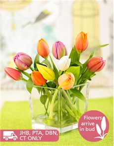 flowers: Tulips in a Square Vase!