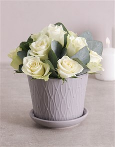 flowers: White Roses in Grey Pot!