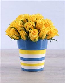 flowers: Yellow Roses in Round Stripy Vase!