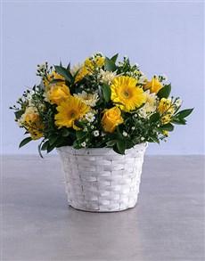 flowers: Shed Light Flowers in Basket!