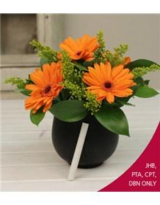 flowers: Orange Mini Gerberas in Chalkboard Vase!