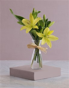 gifts: Milk Jug of Lilies!