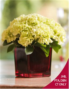 flowers: Green Carnations in a Red Vase!