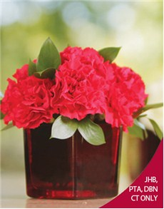 flowers: Red Carnations in a Red Vase!