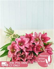 flowers: Pink St Joseph Lily Bouquet!
