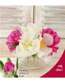 flowers: Mixed Peonies in a Vase!