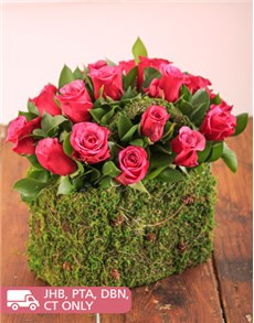 Flowers: Cerise Roses in a Moss Basket!