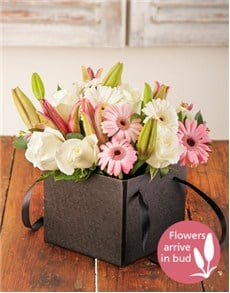 flowers: Pastel Flowers in a Box!