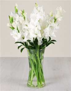 flowers: White Gladiolus in a Glass Vase!