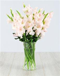 flowers: Light Pink Gladiolus in a Glass Vase!