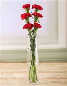 flowers: Simply Six Red Carnations !