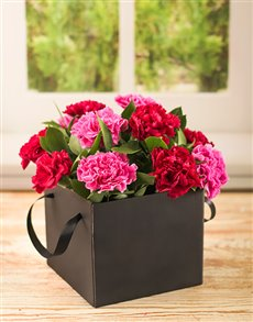 flowers: Mixed Red and Pink Carnations in a Box!