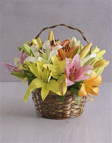 Flowers - Basket : Mixed Lilies in a Basket!