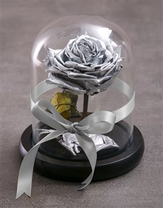 flowers: Tale As Old As Time Preserved Silver Rose!