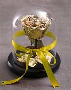 flowers: Tale As Old As Time Preserved Gold Rose!