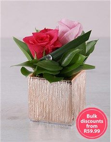gifts: Rose Passion Duo in Square Vase!
