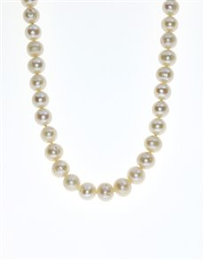 jewellery: Fresh Water 8mm White Pearl Necklace NJPC014!