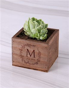 flowers: Personalised Laurel Wooden Box with Succulent!