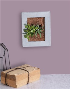 flowers: Succulent Photo Frame!