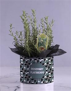 plants: Rosemary In Geometric Hatbox!