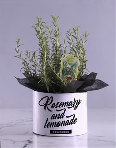 plants: Rosemary Lemonade Hatbox!