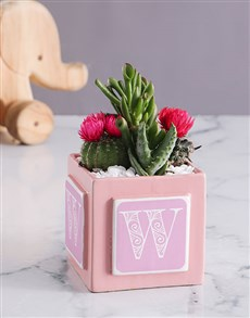 flowers: Personalised Pink Baby Box with Cacti !