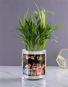 flowers: Personalised Family Areca Palm!