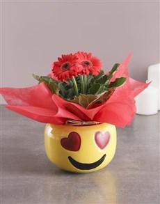 plants: Red Gerbera Plant Gift In Emoji Pot!