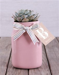 plants: Personalised Potted Succulent!