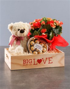 gifts: Begonia Love Box!