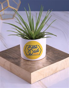 flowers: Best Dad Ever Succulents!