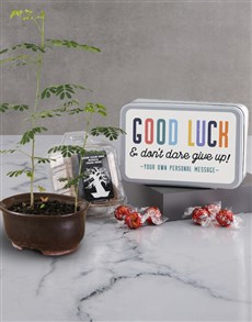 plants: Good Luck Baobab Tree and Lindt!