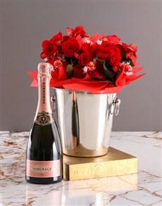flowers: Begonia Ice Bucket Gift!