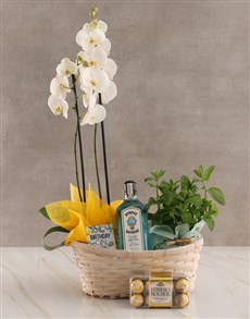 flowers: Mint and Gin Orchid Birthday Hamper!