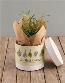 plants: Herb Crazy Hatbox!