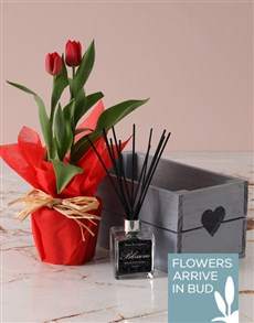 flowers: Red Tulips And Incense Crate!