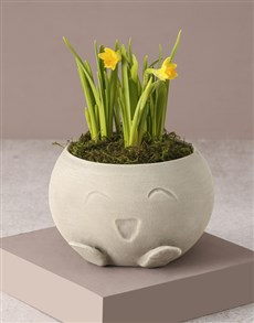 flowers: Adorable Potted Daffodil!