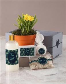 flowers: Daffodil Bath and Body Peacock Pamper Hamper!