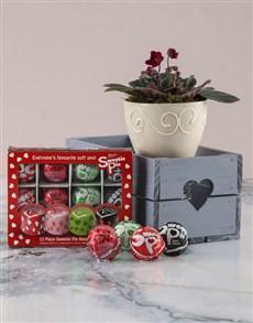 plants: African Violet In Heart Crate Sweetie Pie Combo!