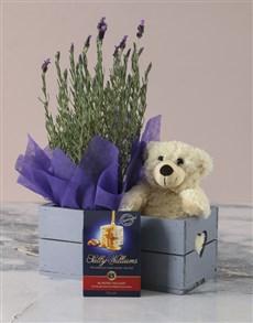 plants: Lavender Hamper in Heart Crate!