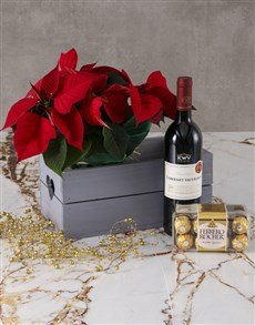 flowers: Love and Chocolate Poinsettia Hamper!