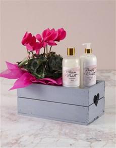 flowers: Cerise Cyclamen Bath And Body Crate!