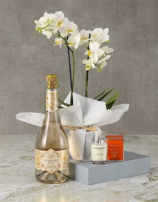 plants: Sparkling White Orchid Wonder!