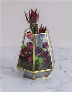 flowers: Abracadabra Roses in a Terrarium !