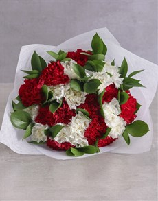 flowers: Striking Red and White Carnations !