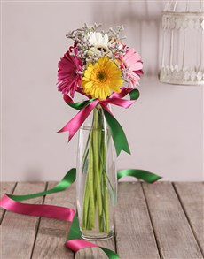 gifts: Gerbera Daisies in a Cylindrical Vase!