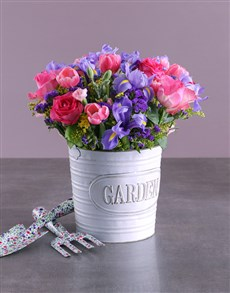 flowers: Iris Mix in Metal Bucket!
