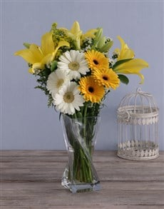 flowers: Sunbright Daisies in a Vase!