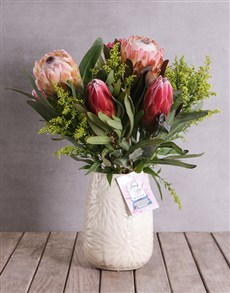 gifts: Thank You Proteas!