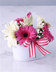 gifts: Vanilla Variety Gerbera Array!